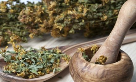 Traditional medicine practitioners urged to register businesses